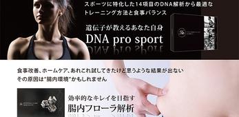 """《東京》2月19日「StFlairDNA栄養学""""Cコース""""&腸内フローラ説明会」"""