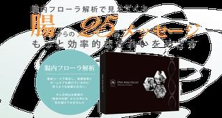 《大阪》12月17日「DNA栄養学&腸内フローラ解析」セミナー