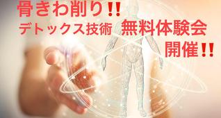 技術無料体験会!「毒素排泄デトックス技術」痩身&不調改善・腸改善でサロンの主力メニューに