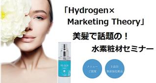 「Hydrogen ×Marketing Theory」セミナー